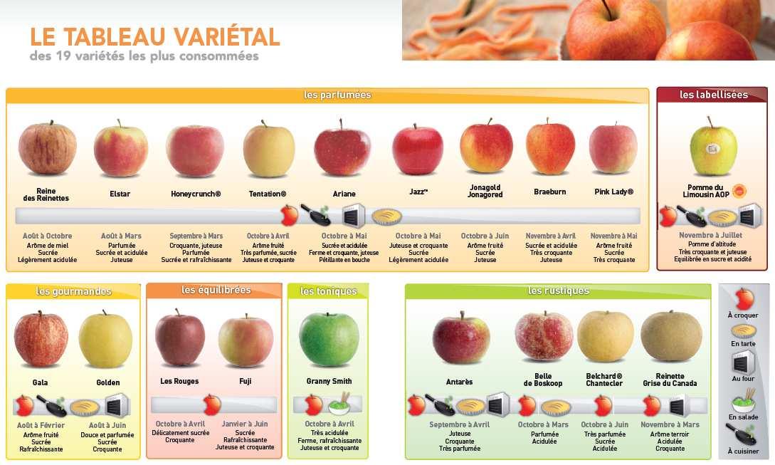 ob_32355f_varietes-pommes.png